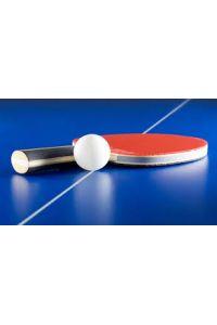 Ampliar información de Campeonato de ping-pong