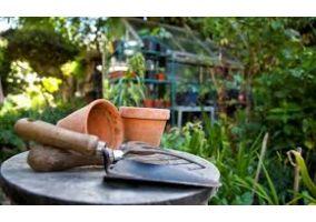 Ampliar información de Convocatoria de bolsa de empleo para peón de Parques y Jardines
