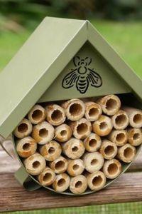 Ampliar información de Hotel insectos