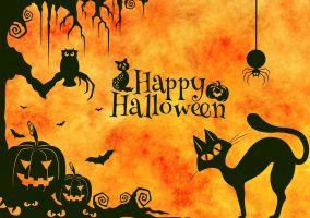 Ampliar información de Fiesta de Halloween sostenible