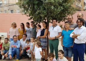 Ampliar información de Primeros padrinos del programa Apadrina un árbol