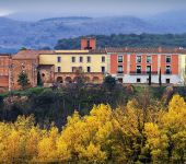 Ampliar información de Monasterio de Vico