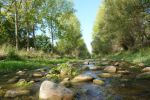 Ampliar información de Inscripción en el nuevo regadío de la margen derecha del río Cidacos