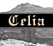 Ampliar información de Quesos Celia