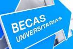 Ampliar información de Ayudas complementarias a estudiantes para la realización de estudios universitarios fuera de la Comunidad Autónoma de La Rioja