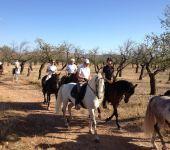 Ampliar información de Paseos a caballo. Hípica El Mollegar